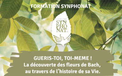 Formations Synphonat 2021
